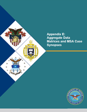 Cover of Appendix E: Aggregate Data Matrices and MSA Case Synopses